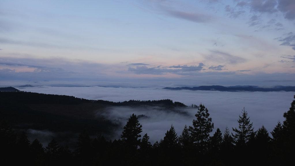 Above the clouds in the Umpqua Forest